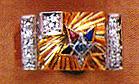 LIM29-BARD1.jpg