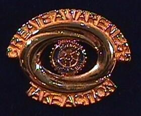 gold_2001_theme_pin.JPG